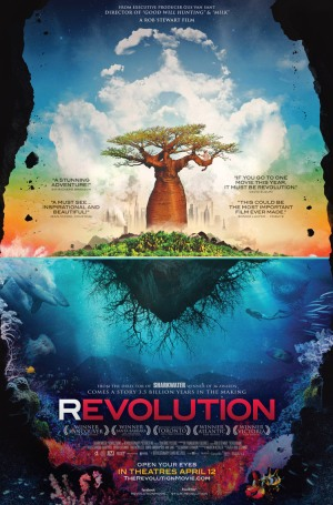 revolution-37